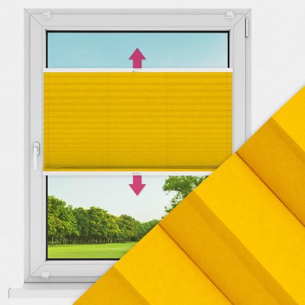 Plissee nach Maß für Fenster Farbe N738 Golden Rod Ausführung VS2