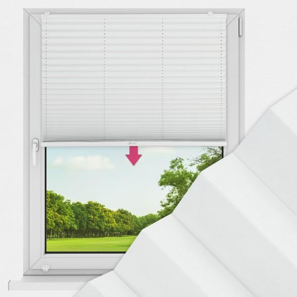 Plissee nach Maß für Fenster Farbe N193 Honeydew Ausführung VS1